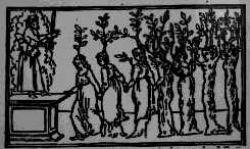 illustratie uit De droom van Poliphilus: de zeven dochters van de neergestorte zonnegod Phaëthon huilen tot ze in bomen veranderen.